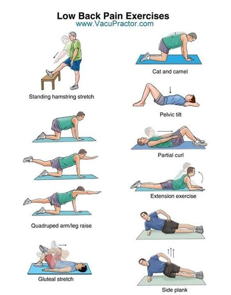 lower back pain exercises in bed