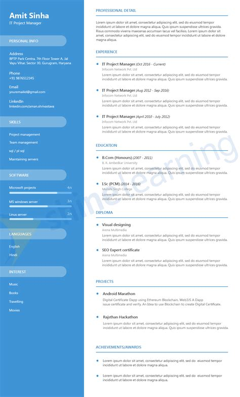 Professional resume services online denver