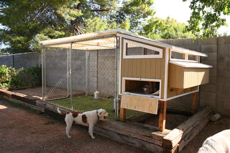 making easy chicken coop