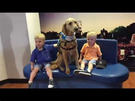 Meet Professor Bunsen Honeydew At Kravis Childrens Hospital