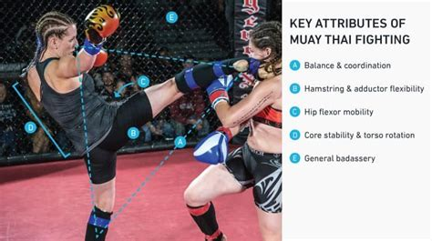 muay thai hip flexor strengthening routines of successful people