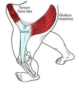 muscle strain hip abductor pain tfl journey