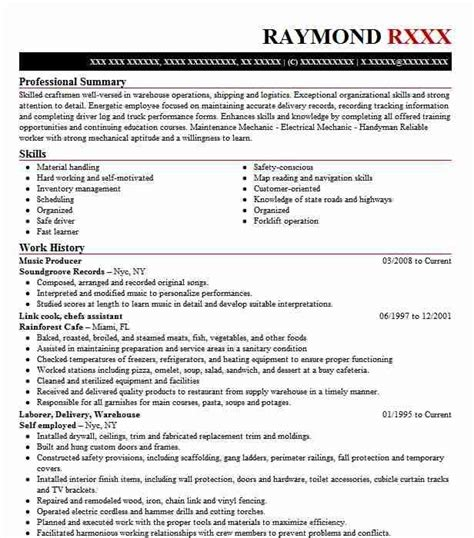 sample resume producer page entertainment resumes video ...