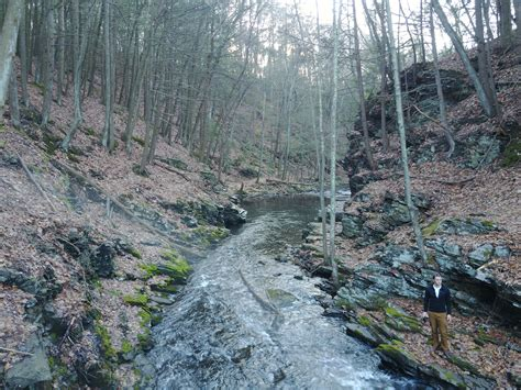 Read Books Mystery in the Ravine Online