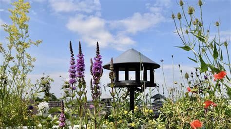Naturgarten Youtube
