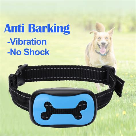no barking dogs