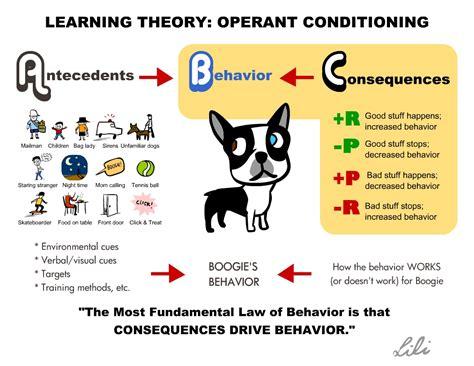 Operant Conditioning Training Dogs