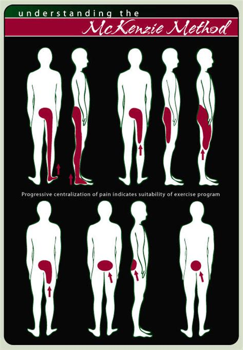 pain in upper legs and lower back
