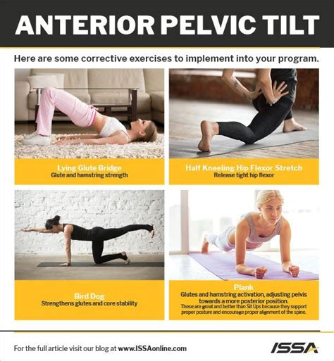 painful tight hamstrings exercise hips your pelvic floor in pregnancy