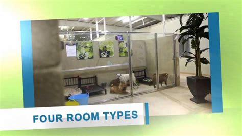 Paws Play Dog Resort Training Center