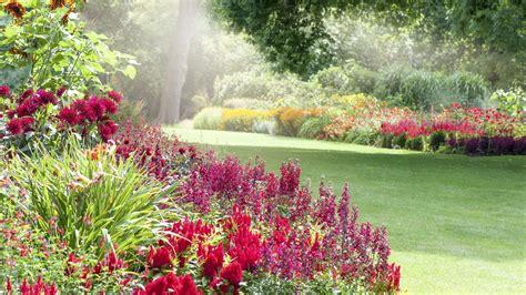 Pflanzen Garten August