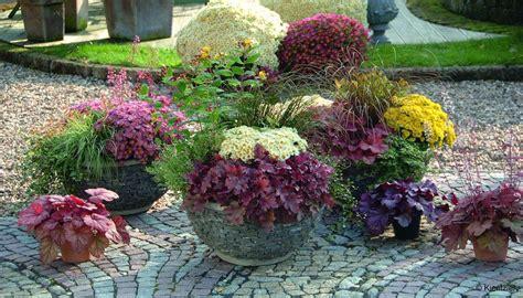 Pflanzen Garten Herbst