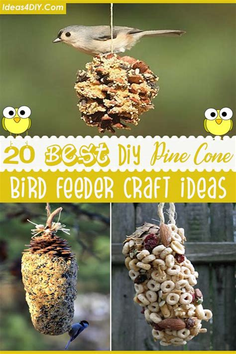 pine cone bird feeder ideas
