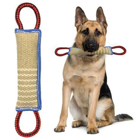 Police Dog Training Toys