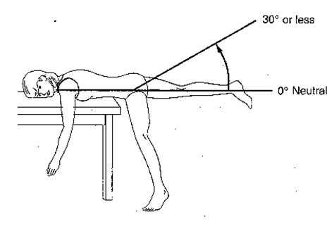 primary flexor of hip when knee extended measuring angles with a protractor