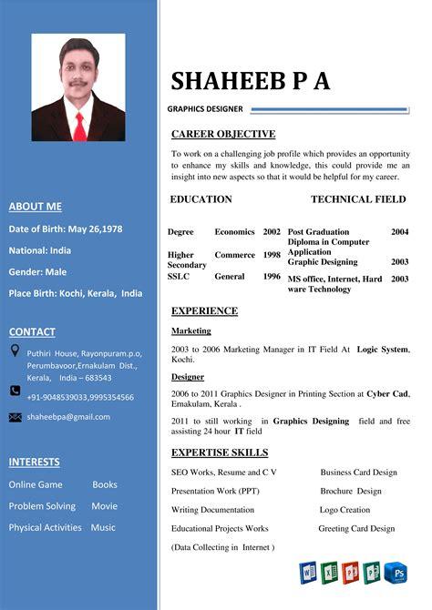 Professional Cv Template Engineer Curriculum Vitae O Cv