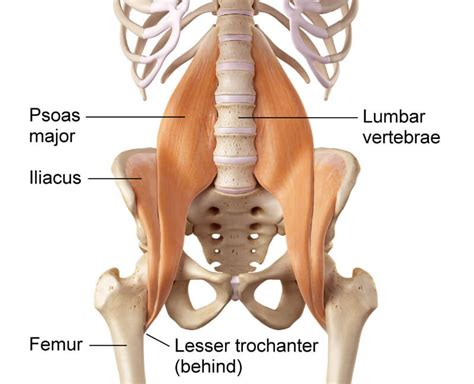 psoas hip flexor syndrome