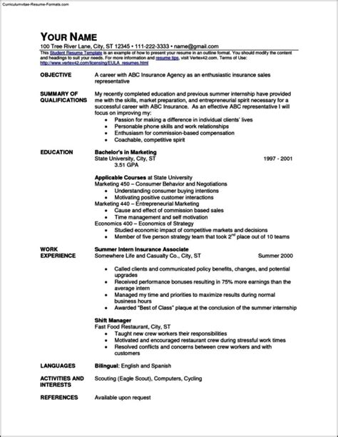 Quick Professional Resume Template Cv Template Free Professional Resume Templates Word