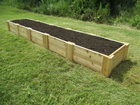 raised plant beds 2 x 10