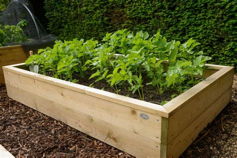 Raised Wooden Garden Beds