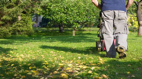 Rasen Pflegen Frühjahr