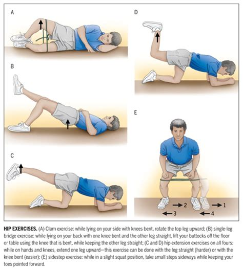 rehab exercises for hip impingement surgery where hip joints