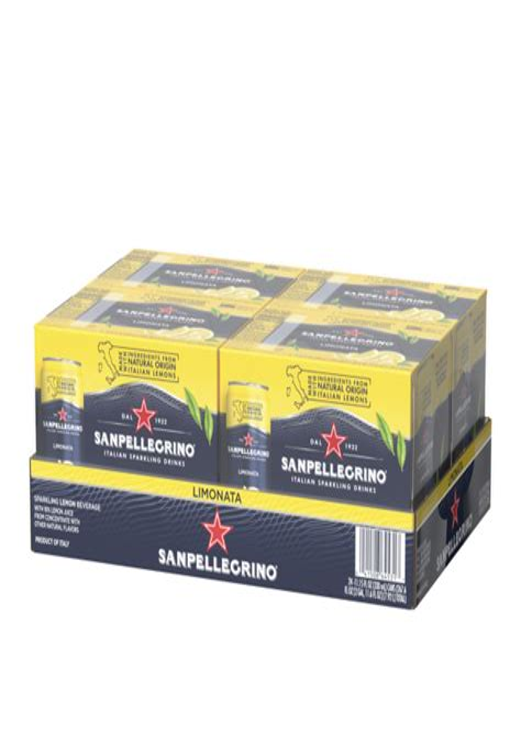resume blaster app sample resume format work experience
