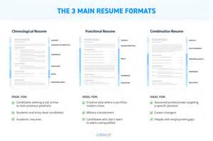 Resume Formats Ms Word 3 Main Resume Formats Examples In Ms Word
