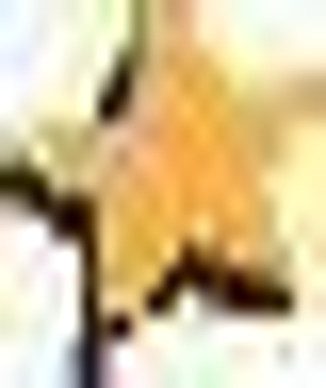 Resume Job Jobstar Resume Guide Sample Resumes Cover Letter