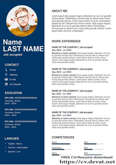 Resume Sample For It Professional Sample Resume Free Resume Examples