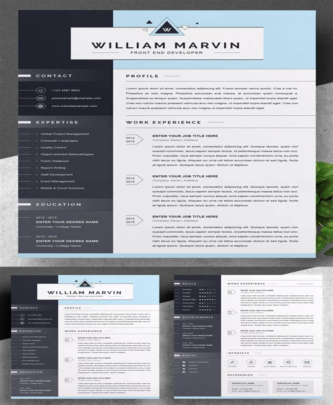 resume sample key accomplishments top 3 resume examples on how to highlight key accomplishments key