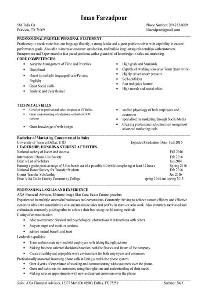 Sample CIO Resume from Executive Resume Writer   IT Resume Writer Haad Yao Overbay Resort