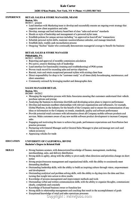 sample resume executive summary format retail sales executive resume sample executive resumes - Executive Summary Example Resume