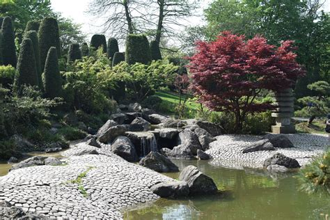 Rheinaue Bonn Japanischer Garten