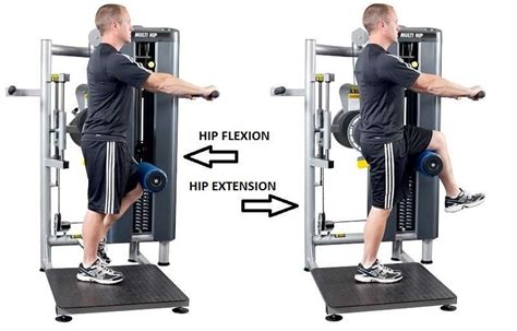 rotary hip flexor machine standing lat extension