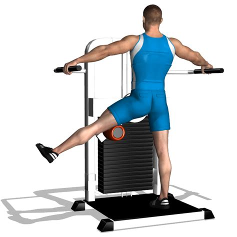 rotary hip machine exercises