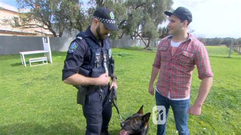 Sa Police Dog Operations Unit Training As Filmed By Totally Wild