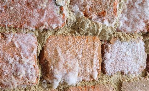 Salpeter Im Mauerwerk