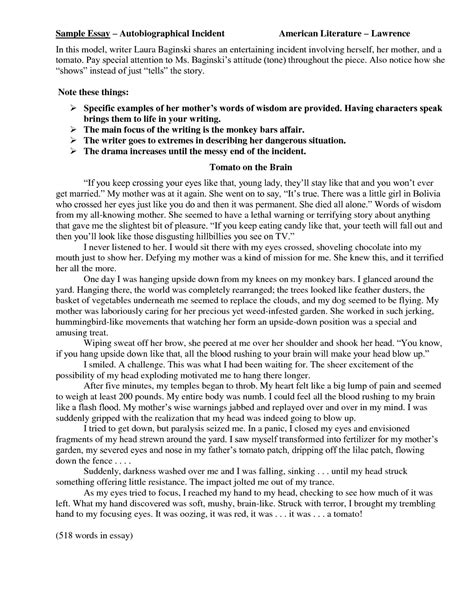 examples of autobiographical essays