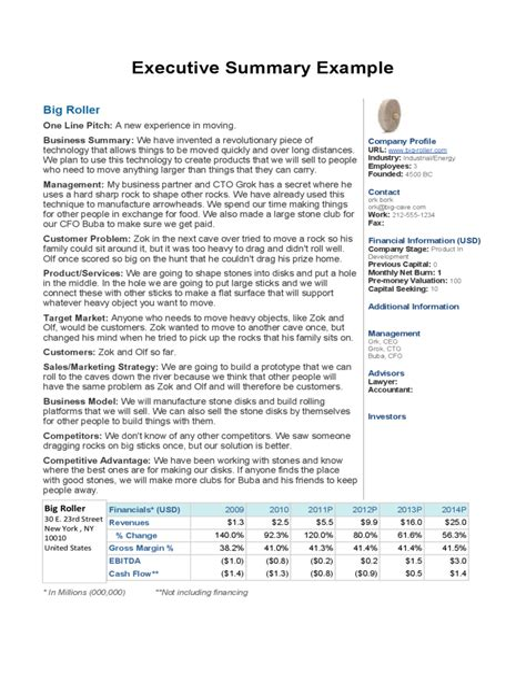 sample executive summary resumes