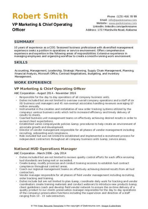 Sample Resume Bank Officer Chief Operations Officer Resume Sample Global Operations