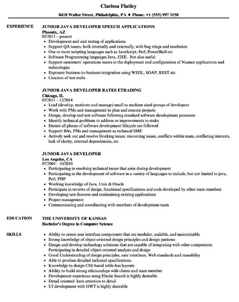 entry level java developer resumes - Paso.evolist.co