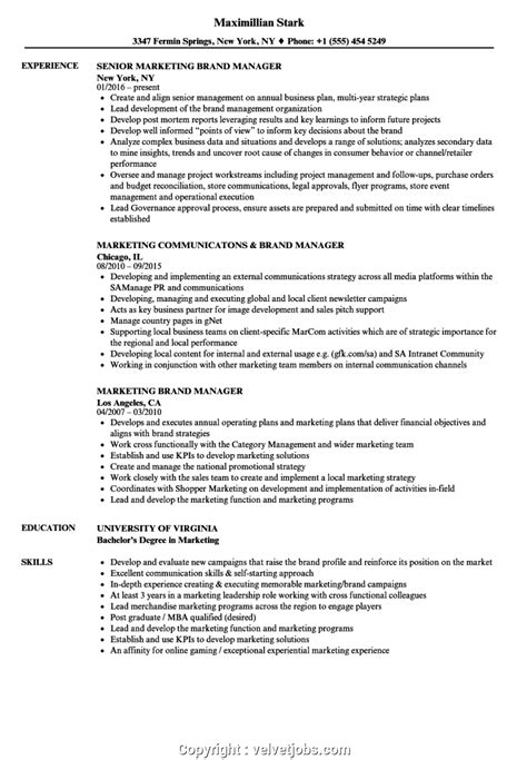 sample resume brand manager fmcg fmcg brand manager cv sample 100 results career faqs. Resume Example. Resume CV Cover Letter