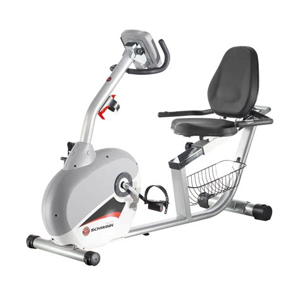 sears schwinn 240 recumbent exercise bike