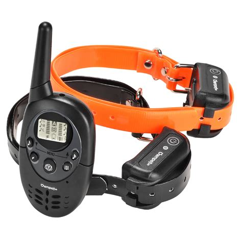shock collars for training dogs