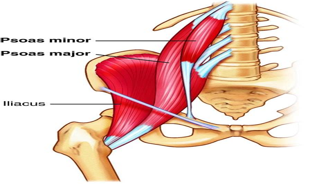 sore hip flexor muscles iliopsoas pain si