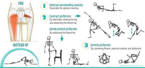 sore hip flexors and piriformis muscle action at different ages