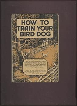 speed train your bird dog
