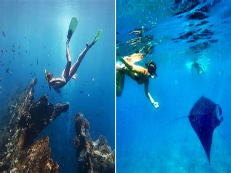 Sscnbkngoid Bali 7 Snorkelling Spots That Showcase Balis Spectacular