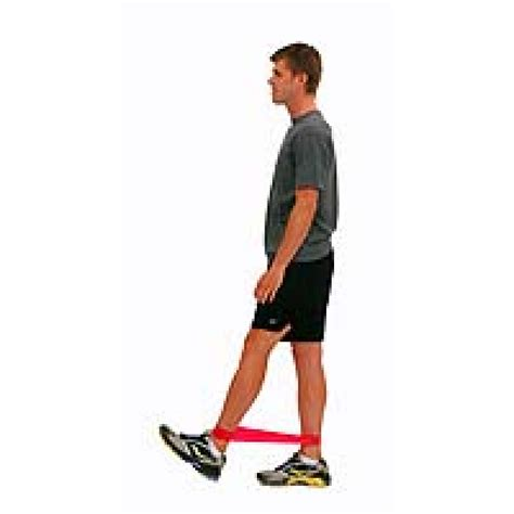 standing hip and knee flexion exercises with resistance loop